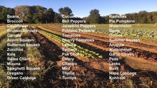 Veggie list